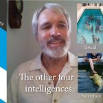 The other four intelligences
